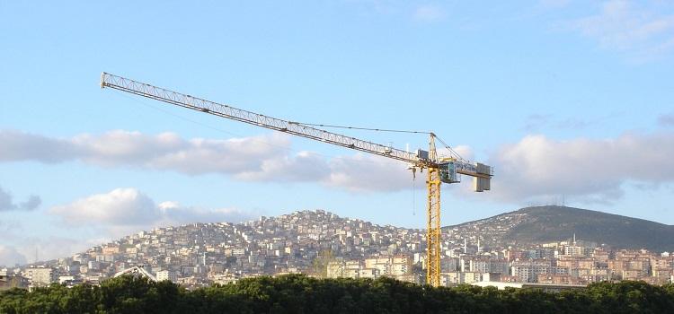 Cranes 101